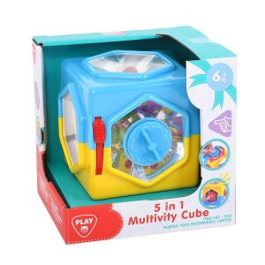 5 in 1 Multivity Cube Playgo